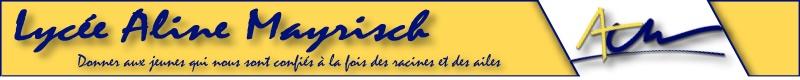 LAML Logo